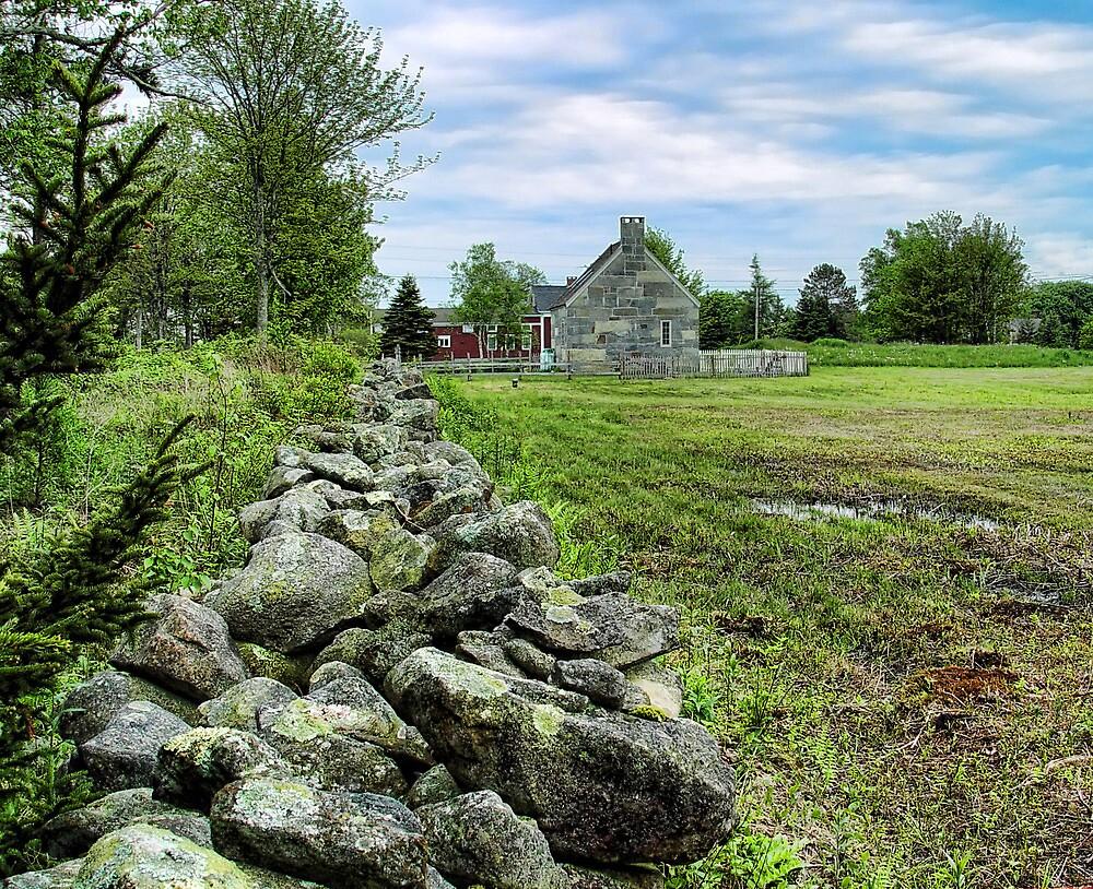 Maine Rock Wall by Carolyn  Fletcher
