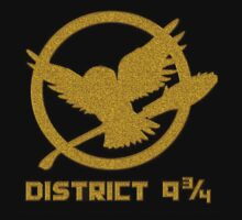 District 9 3/4 Gold