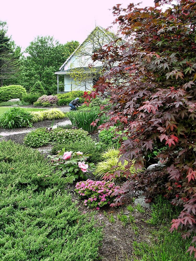 Garden Club by Carolyn  Fletcher