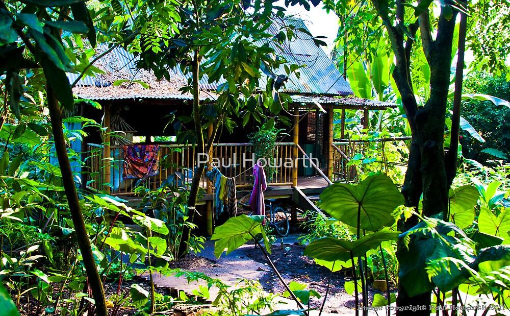 Malaysian Jungle Hut by Paul Howarth