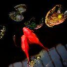 Three Fish by LoveSMP