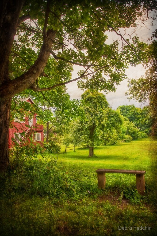 Somewhere to Rest by Debra Fedchin