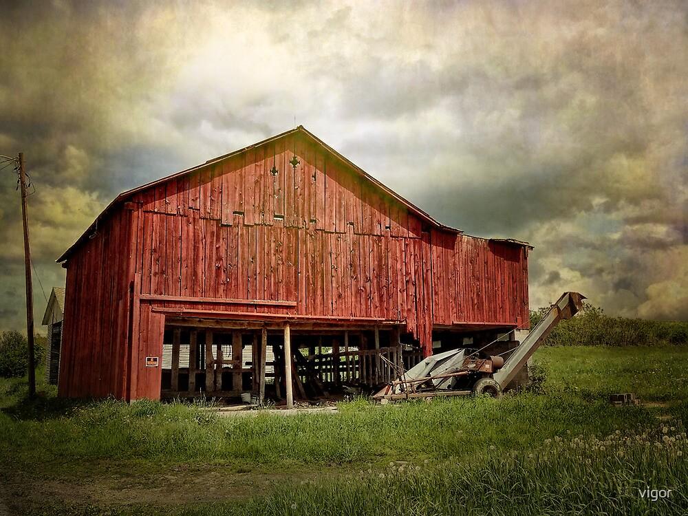 A Red Barn by vigor