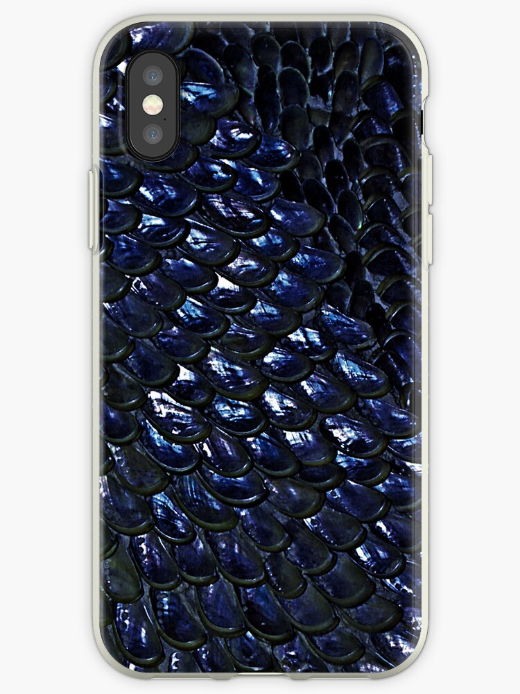 Dark Blue Shells by Bel Menpes