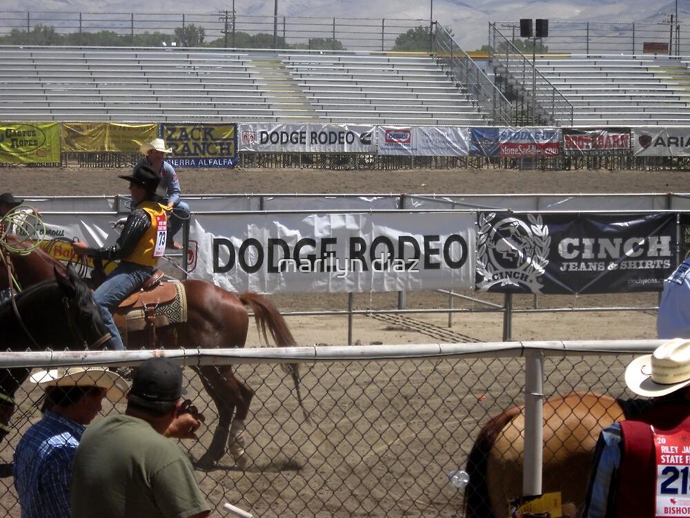 Cowboys At Play by marilyn diaz