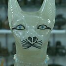 Egypt Cat by Sharon Harris
