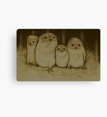 Owlets Canvas Print