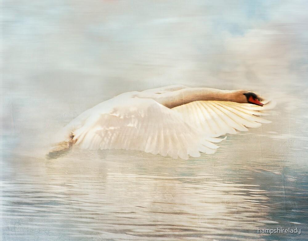 Swan Song by hampshirelady