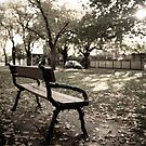 Bench Perspective  by Jamie  Druitt