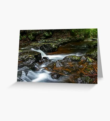 Cedar Creek Greeting Card