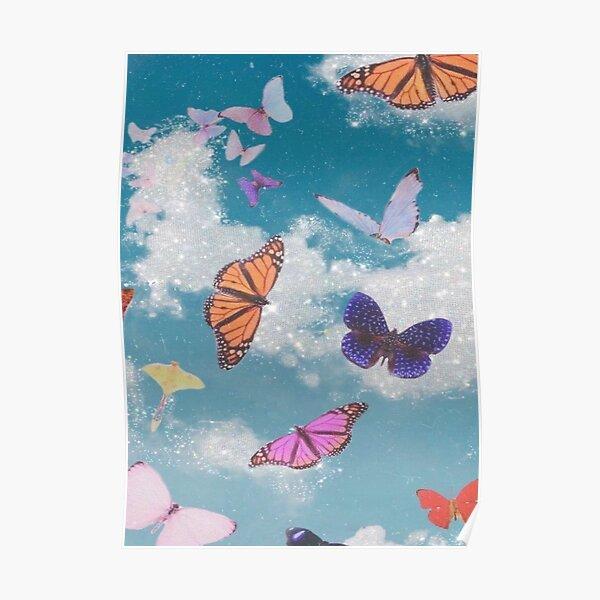 Póster mariposa Póster
