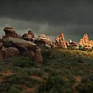 A Stormy Day at Arches National Park by Peter Hammer