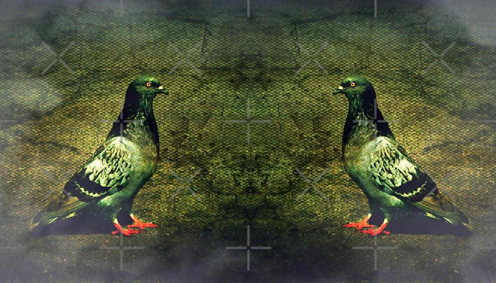 Cloned by Scott Mitchell