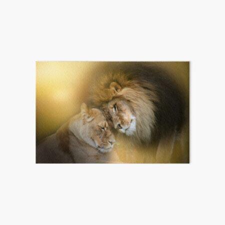 Tender Moment (Lions) Art Board Print