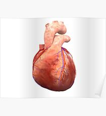 Awesome Real Heart Poster