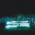 'Lighting the Fireflies' LOMO Photo, Montrose, Victoria, Grunge, Graffiti, Double Exposure,  by Ben  Cadwallader