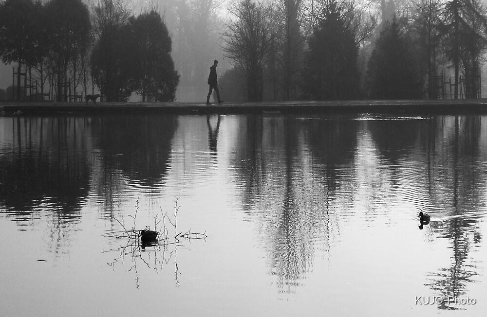 Foggy Morning, Reflection by KUJO-Photo