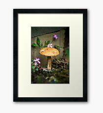 Wonderland mushroom Framed Print