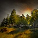 In The Shadows by Charles & Patricia   Harkins ~ Picture Oregon