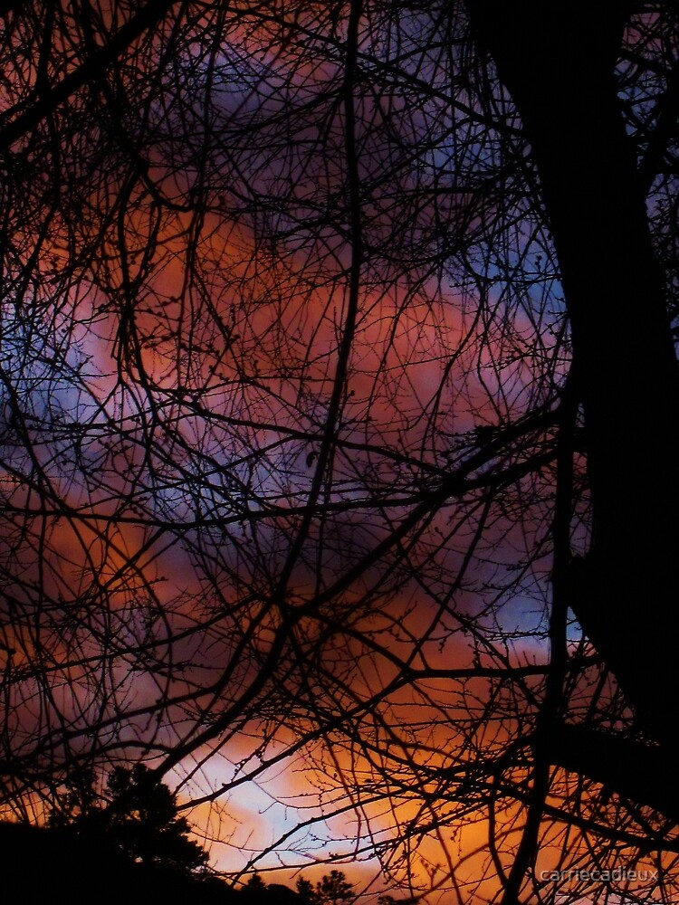 Sunrise in Manitou Springs CO by carriecadieux