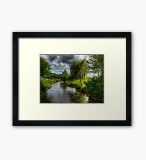 Willow & Water Framed Print