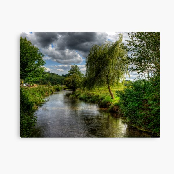 Willow & Water Canvas Print