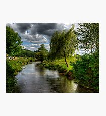 Willow & Water Photographic Print