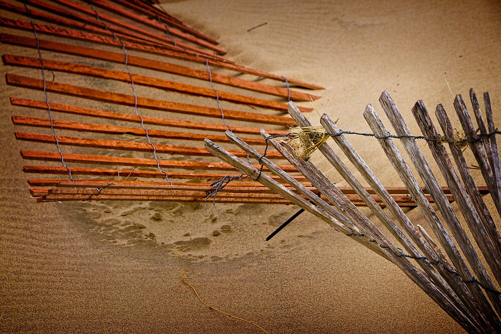 Sand Fence falling down on the Beach by Randall Nyhof