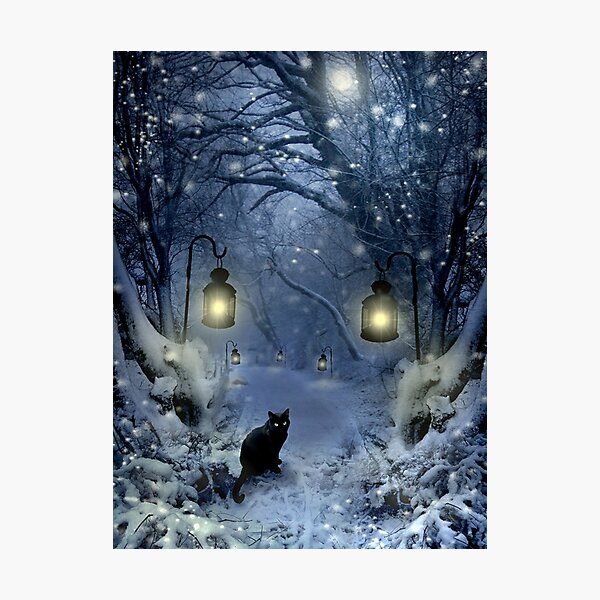 Winter Twilight  Photographic Print