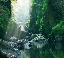 The Fairy Glen 3 by Angie Latham