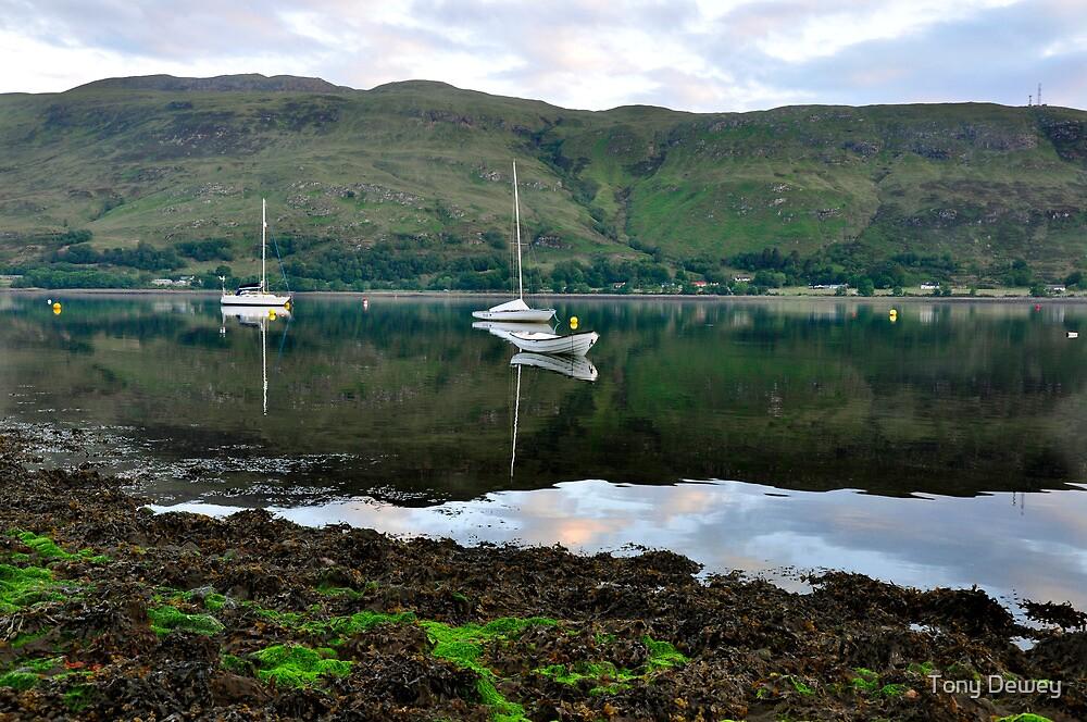 Loch Linnhe by Tony Dewey