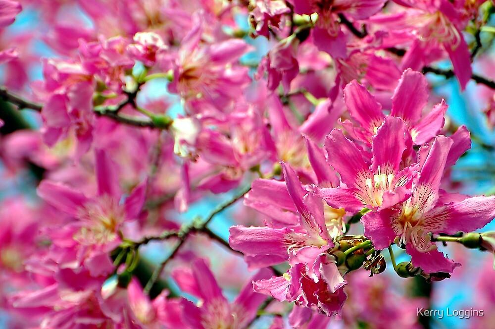 Pink Bloom by Kerry Loggins
