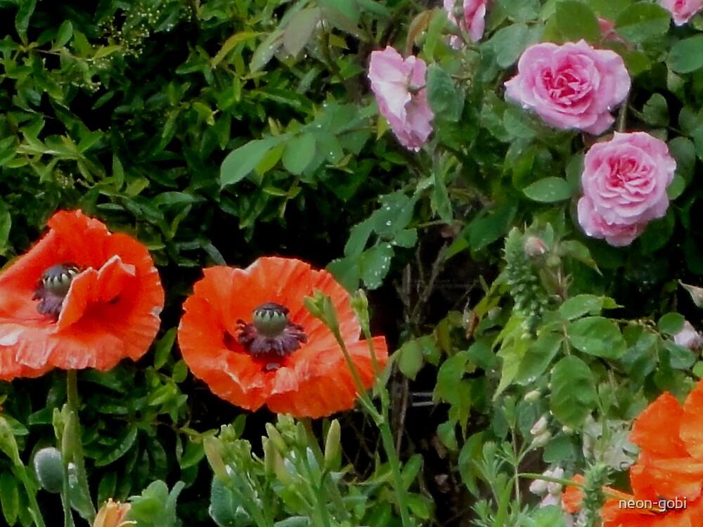 poppies by neon-gobi