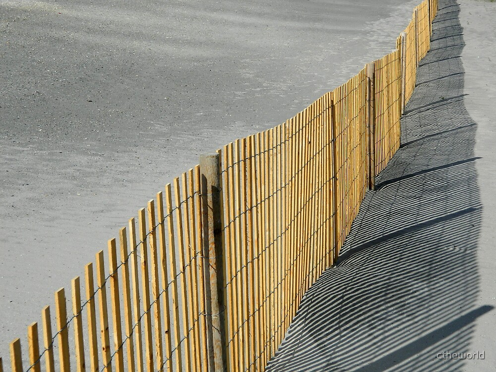 Fence Along the Jersey Shore  ^ by ctheworld