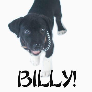 billy dog by dswarts