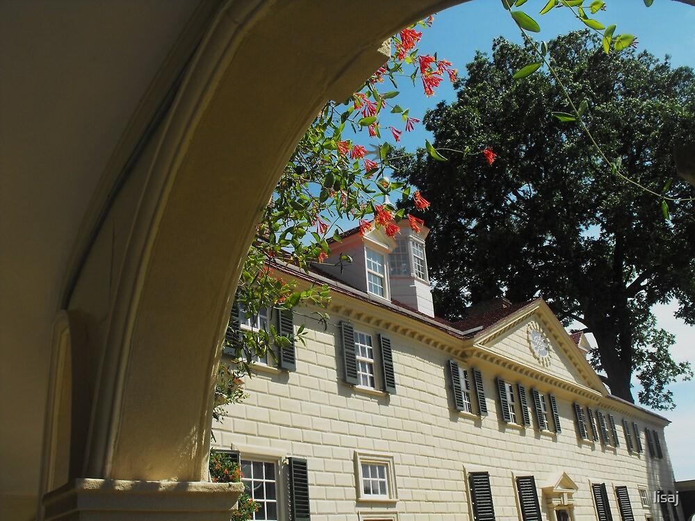 washington's arch by lisaj