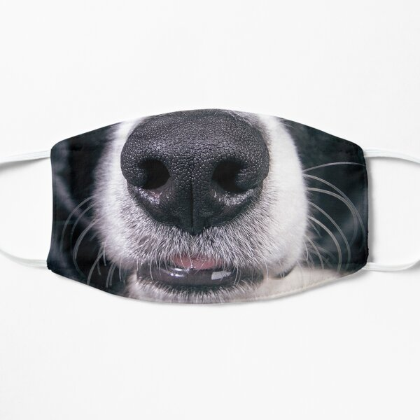 Border Collie Mouth Mask