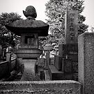 Things of stone and wood - Japan by Norman Repacholi