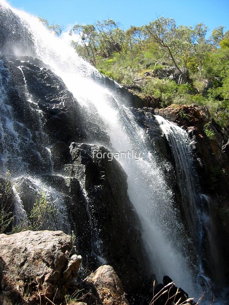 McKenzies Falls - Halls Gap by forgantly