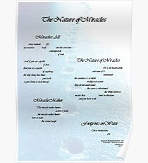The Nature of Miracles series Poster