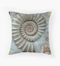 A Home For Old Fossils? Throw Pillow