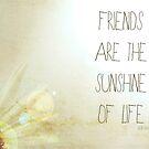 Sunshine & Friendship. by Vintageskies
