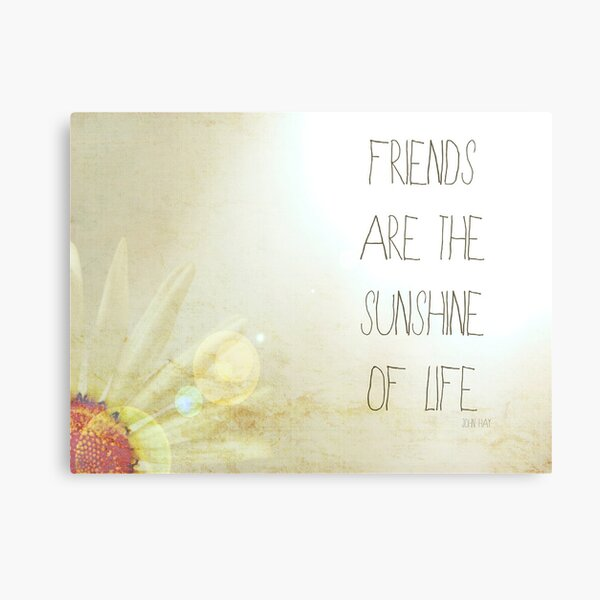 Sunshine & Friendship. Metal Print
