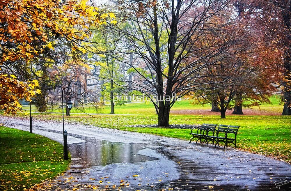 Empty walkway on a beautiful rainy autumn day  by printsforwalls