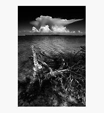 the anvil Photographic Print