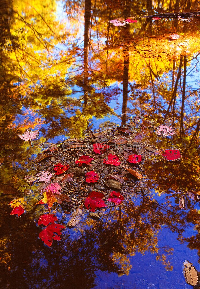 AUTUMN REFLECTIONS by Chuck Wickham