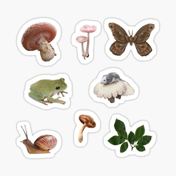 Goblincore fungi and frogs sticker set Sticker