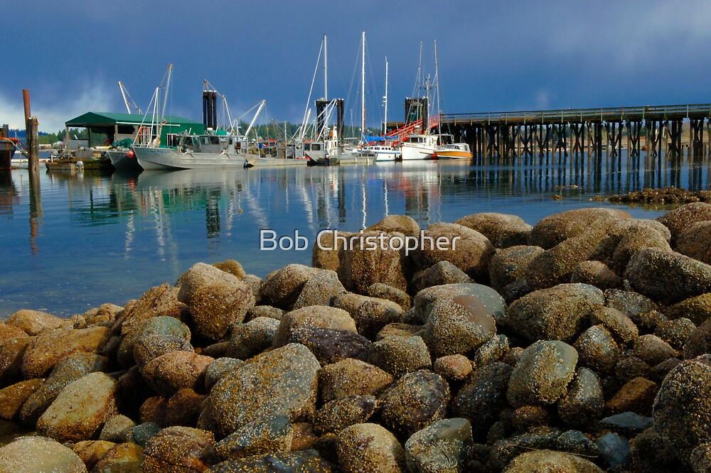 Coastal Beauty Vancouver Island by Bob Christopher