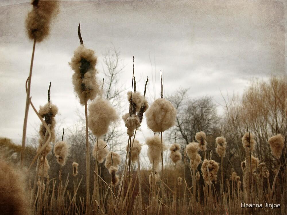 Reeds in Fall by Deanna Jinjoe