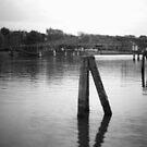 River - bridge b&w by OLIVER W